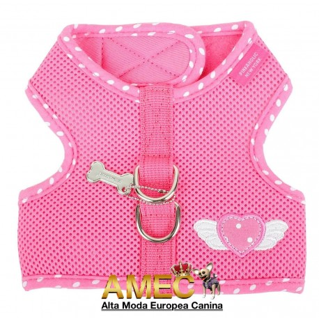 HARNESS MESH AND POLKA