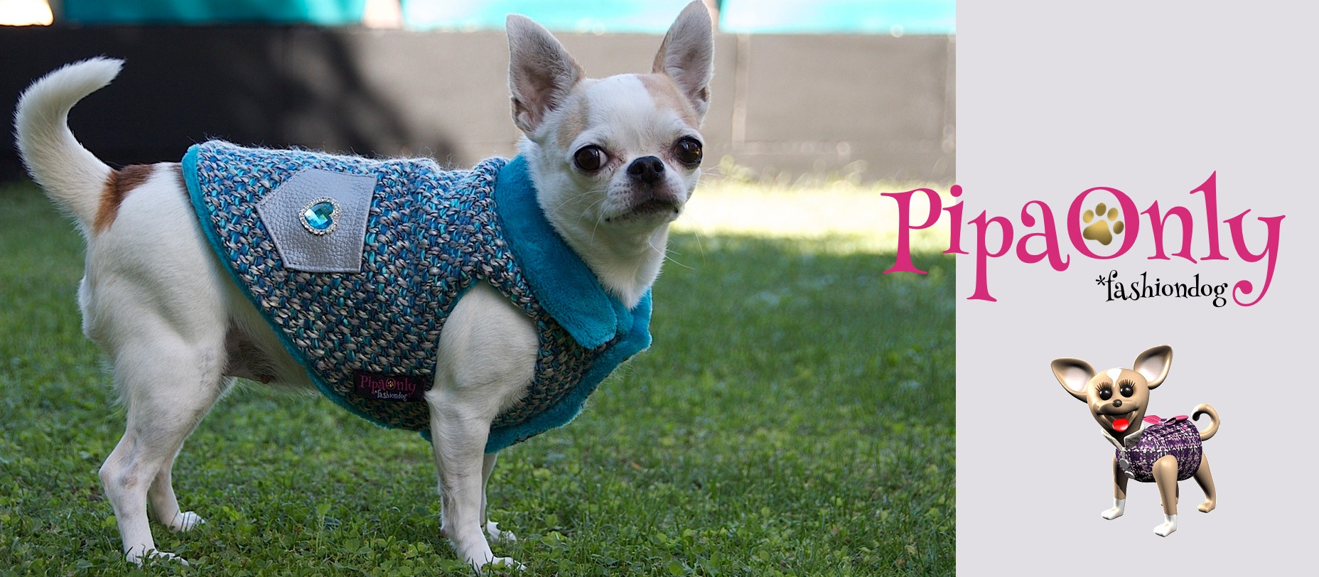 ropa-perros-pipaonly