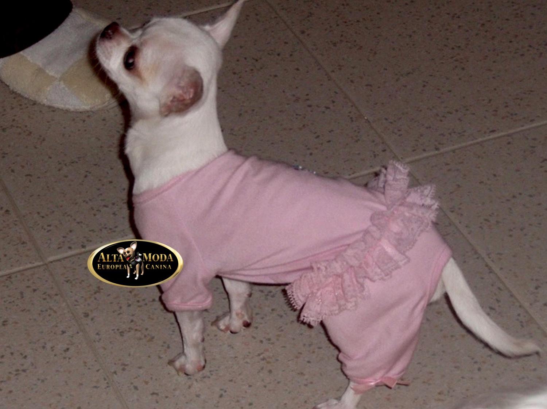 calidad de marca zapatos para baratas disfruta el precio más bajo Pijamas Perros. | Alta Moda Europea Canina